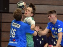 Handball: Gut gebrüllt gegen die Löwen