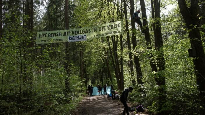 Baumbesetzung im Forst Kasten