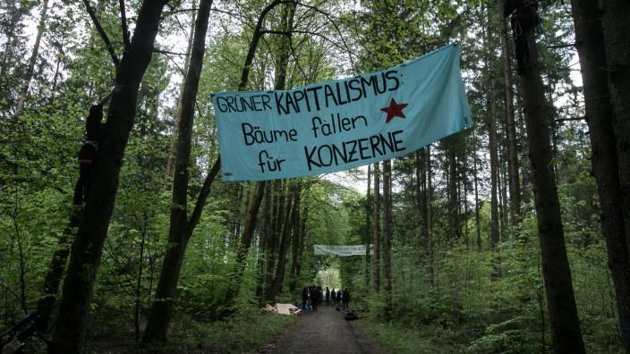 Im Forst Kasten wurden am Dienstagnachmittag Transparente und Baumhäuser in die Wipfel gehängt.