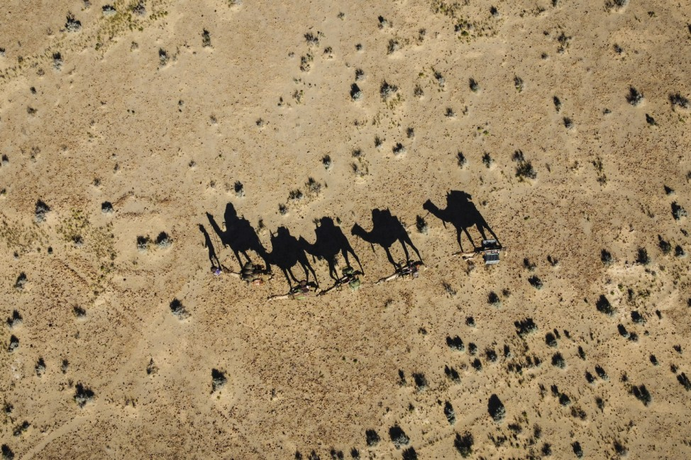 Australian Woman On 5,000km Solo Trek Through Outback With Team Of Camels