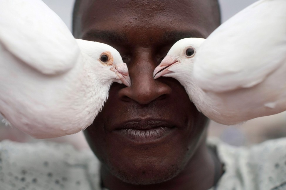 Cubans raising pigeons at their rooftop homes