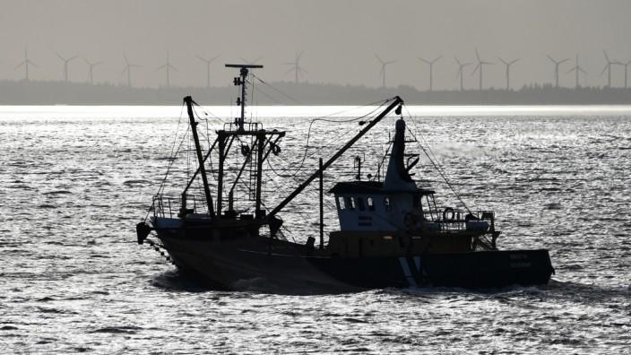 EU und Großbritannien einigen sich auf Fangbeschränkungen