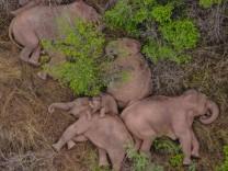 China, wandernde Elefanten-Herde auf über 500 Kilometer langem Marsch  (210607) -- KUNMING, June 7, 2021 -- Aerial photo