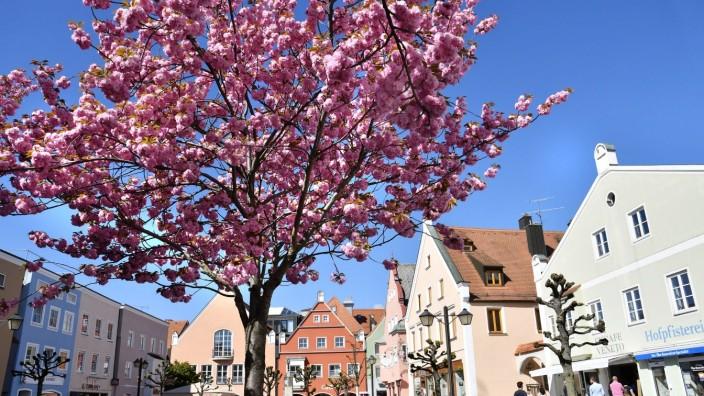 Erding: Ein Anfang ist bereits gemacht: Wenn die Bäume blühen, ist es am Schrannenplatz gleich noch einmal so schön.