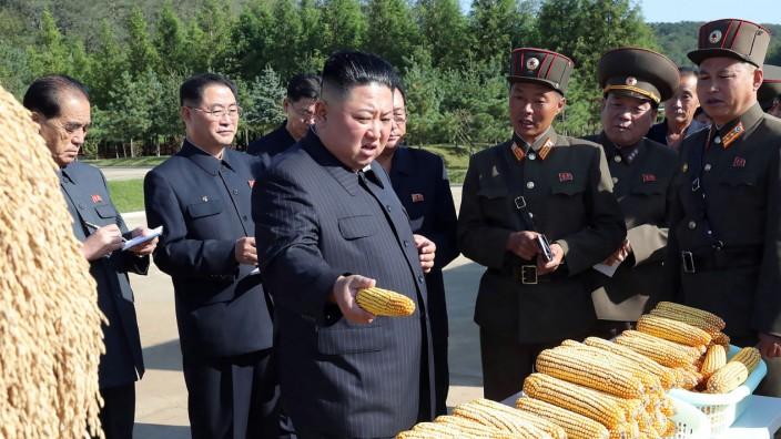 Nordkorea: Machthaber Kim Jong-un beim Besuch einer Farm