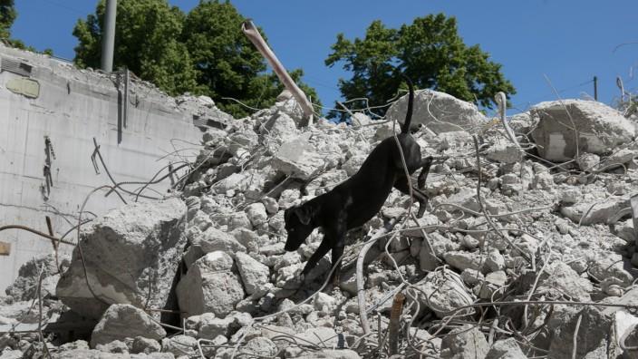 ASB-Rettungshundestaffel übt auf der Ruine des Karstadt Nordbad