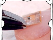 """SZ-Kolumne """"Bester Dinge"""": Einmal Nails mit Mikrochip, bitte"""