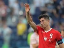 Fußball EM - Schweden - Polen