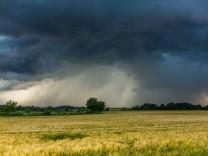 Bodenökologie: Wie die Erde klingt