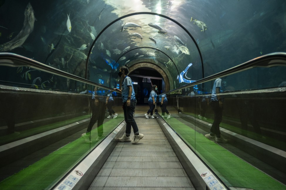 Phuket Aquarium Prepares To Welcome Tourists