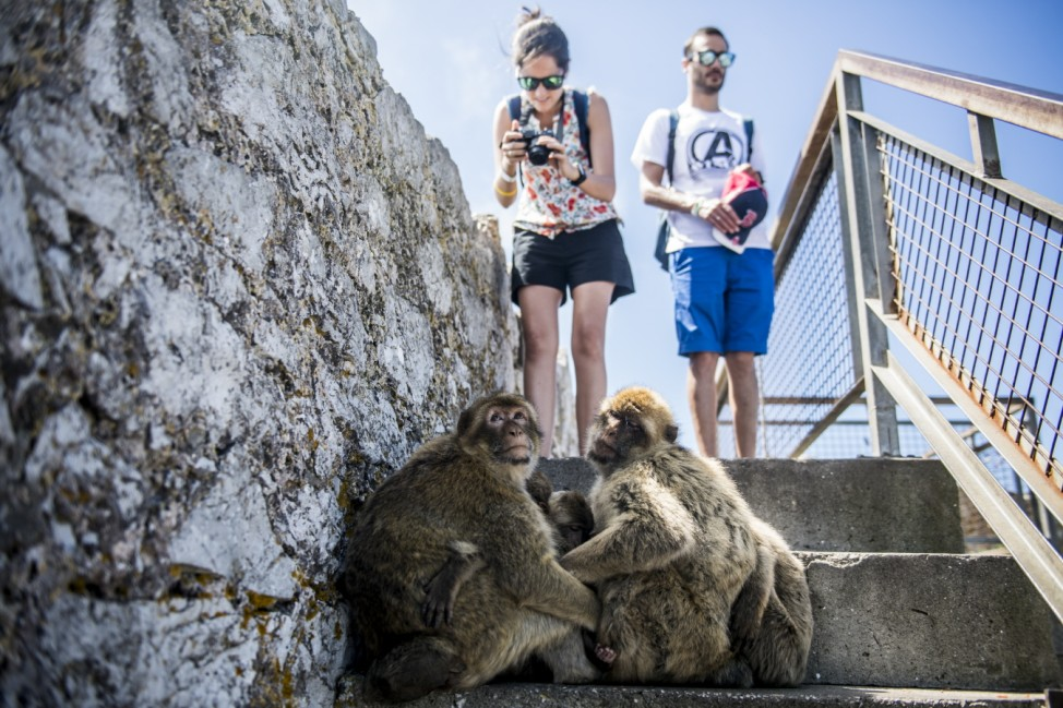 Gibraltar As A British Tourist Green List Destination Amid Covid-19 Summer