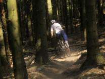Illegale Mountainbike-Strecke im Wald