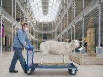 Biotechnologie: Klon im Schafspelz