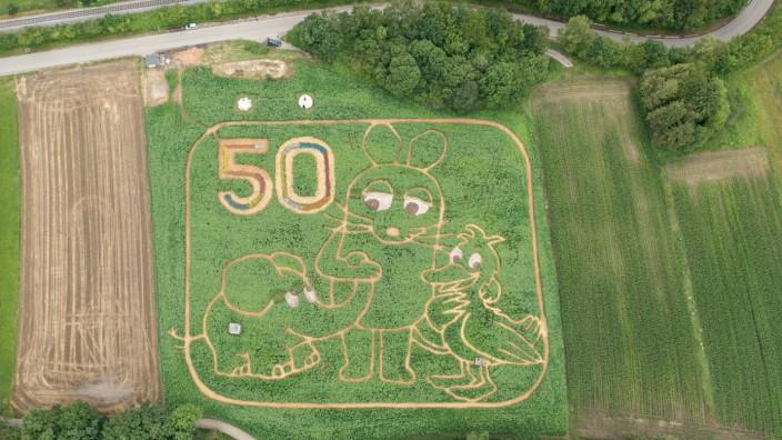 """Utting am Ammersee: Ein Motiv, das den meisten bekannt vorkommen dürfte: Maus, Elefant und Ente feiern dieses Jahr ihren 50. Geburtstag und sind Motiv des Uttinger Irrgartens """"Ex Ornamentis"""" am Ammersee-Westufer."""