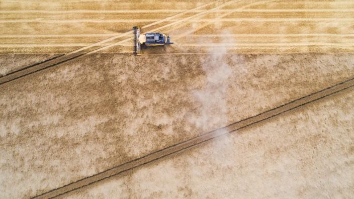 Getreideernte startet in Niedersachsen