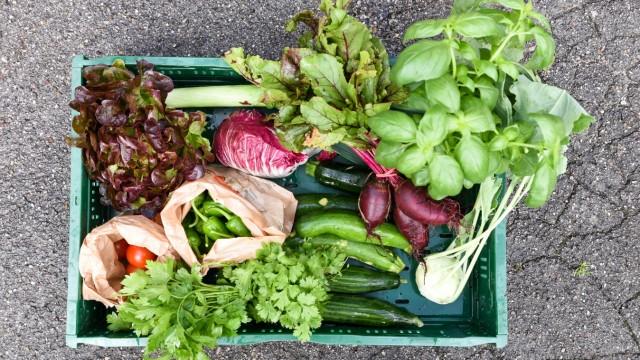 Bio-Lebensmittel: Alles drin: Die Erzeugnisse der Solawi-Gemüsekiste sind gerantiert bio und regional.