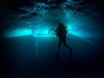 Ozeane: Ist das Great Barrier Reef noch zu retten?