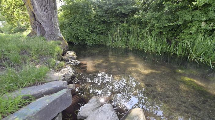 Neubiberg: So friedlich fließt der Hachinger Bach normalerweise dahin, bei starken Regenfällen kann er sich aber zu einem reißenden Strom entwickeln.