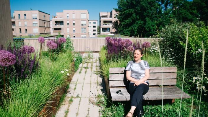 Gemeinschaftsgarten in Bogenhausen: Violetter Gruß aus der Prärie: Landschaftsarchitektin Annika Sailer liebt das Grün auf dem Dach - ein Ort der Ruhe und des Miteinanders.