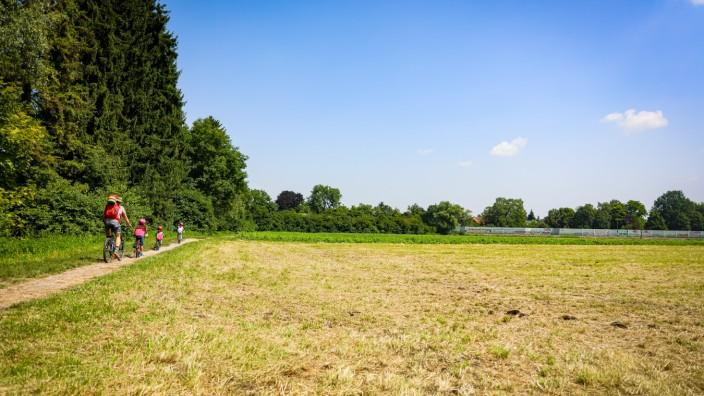 GRÖBENZELL: Feld nahe der Parkstraße
