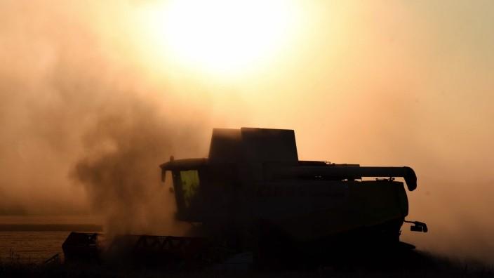 Landwirtschaft: Mit der Wintergerste hat im Landkreis die diesjährige Ernte begonnen. Wenn es trocken ist, müssen die Landwirte jede Stunde für die Feldarbeit nutzen. Dieser Mähdrescher ist in Malching unterwegs.
