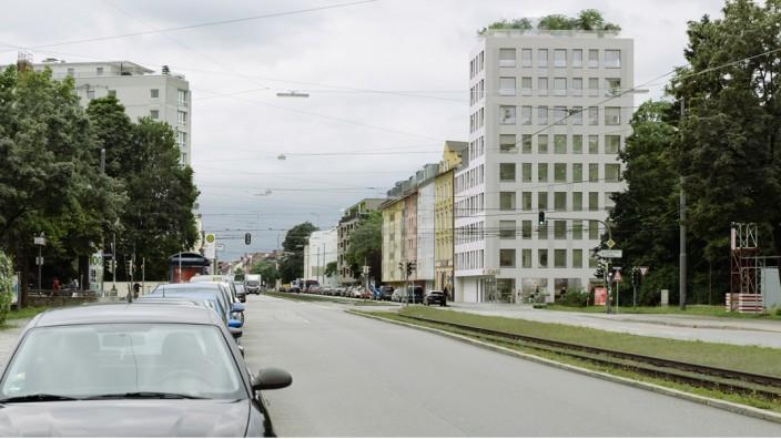 Schwabing: Die Stadt tauscht mit dem Investor die Grundstücke, sodass an der Belgradstraße einige große Bäume stehen bleiben können.