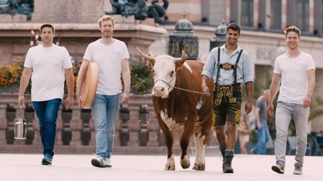 Käsemanufaktur: Sie holen den Käse (und fürs Werbevideo die Kuh) in die Stadt: Johannes Klappacher, Franz Stuffer, Bio-Bauer Leonhard Veicht und Sebastian Kreuels (von links).