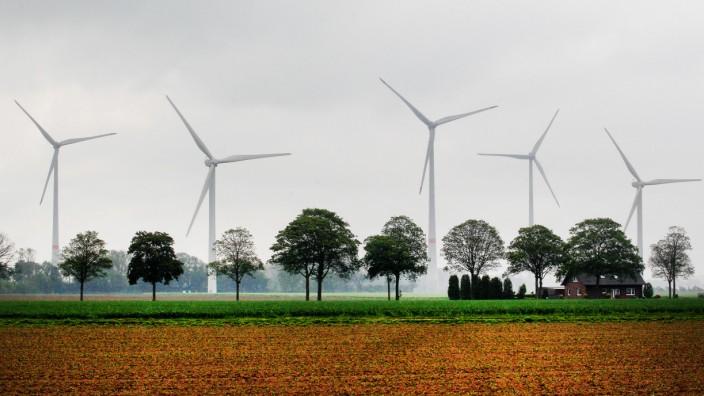 Energieagentur hält zehn Windräder im Pfälzerwald für möglich