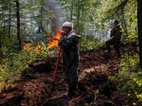 Klimakolumne: Treibhausgase töten