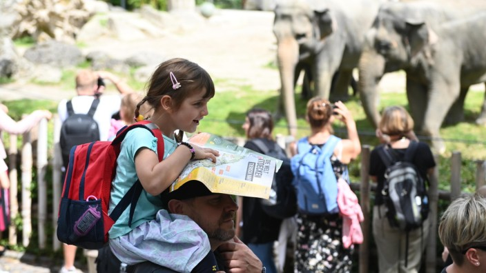 München: Begegnungen auf Augenhöhe: Im Tierpark Hellabrunn sind wieder zahlreiche Besucher - täglich dürfen es maximal 8740 sein.