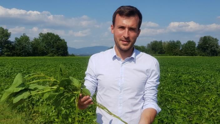 Landwirtschaft: Landwirt Michael Bachl-Staudinger baut in der Nähe von Straubing Soja an.