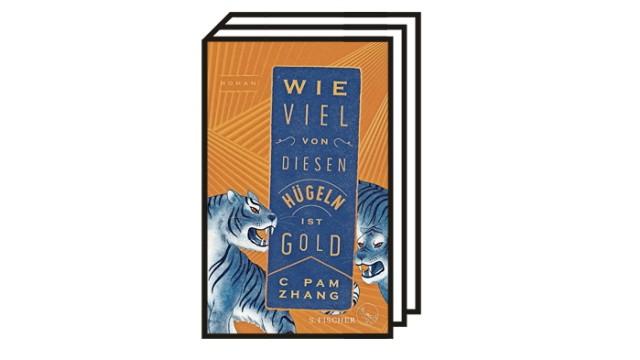 Bücher des Monats: C Pam Zhang: Wie viel von diesen Hügeln ist Gold. Aus dem Englischen von Eva Regul. S. Fischer, Frankfurt am Main 2021. 341 Seiten, 22 Euro.