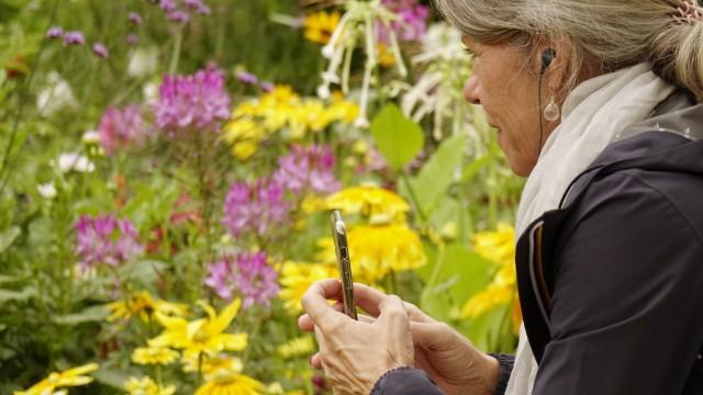 München: Die Teilnehmerinnen und Teilnehmer erkunden die Blütenvielfalt und -pracht des Westparks.