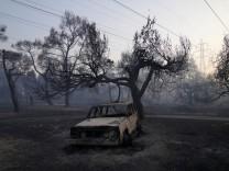 Brände und ihre Folgen: Feuer mit Feuer bekämpfen?