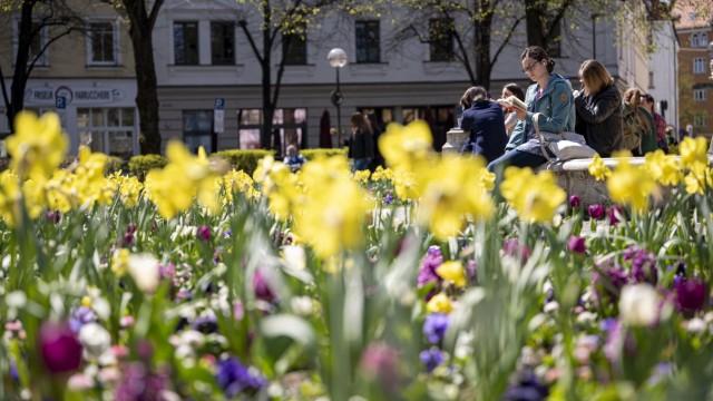 Haidhausen in München im Frühling
