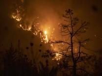 Klimawandel: US-Behörde: Juli war der heißeste Monat seit Beginn der Aufzeichnungen