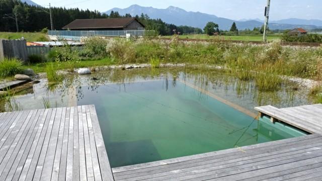 Geheimtipp im Gewerbegebiet: Im Außenbereich des Café Astwerk gibt es sogar einen kleinen Teich. Gebadet werden soll hier allerdings nicht.