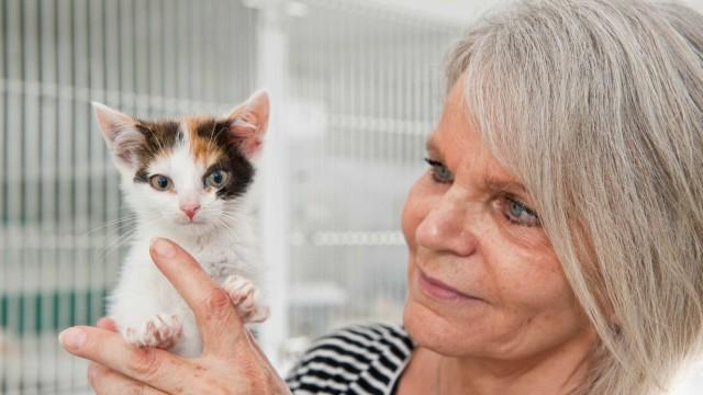 Tierschutz in Ebersberg: Für viele der Tiere hat Evelyn Bauer schon ein neues Zuhause gefunden.