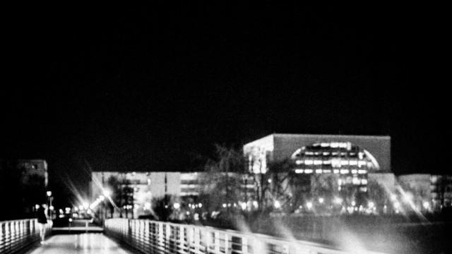 Fuchs auf der Gustav-Heinemann-Brücke, Berlin, 2021