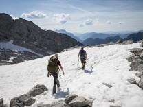 Artenvielfalt: Schmelzende Gipfel