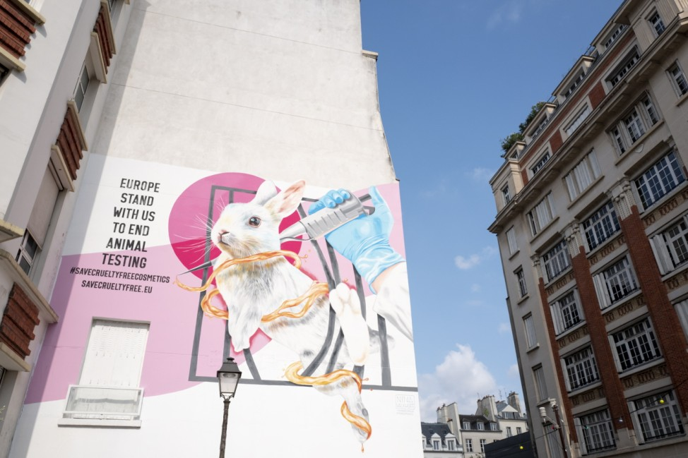 Dove and The Body Shop Take a Stand Against Animal Testing in Cosmetics