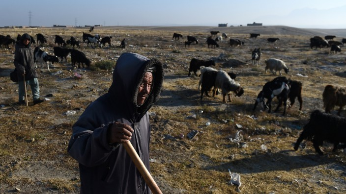 Humanitäre Hilfe: Afghanische Schäfer am Rande von Masar-i-Scharif.