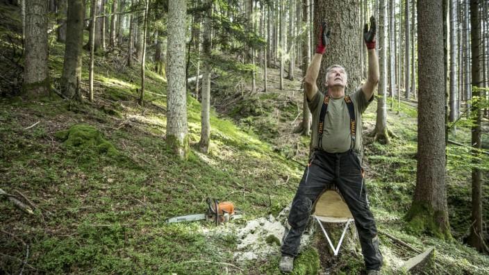 """SZ-Serie: Mensch und Wald, Folge 7: """"Mir ist noch kein Baum falsch gefallen"""", sagt Waldbauer Michael Lechner."""