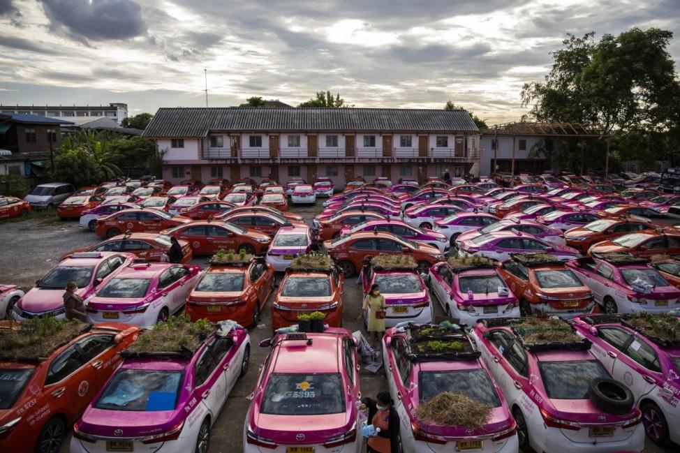 BESTPIX- Bangkok's Taxis Turn Into Gardens As Low Tourism Bites