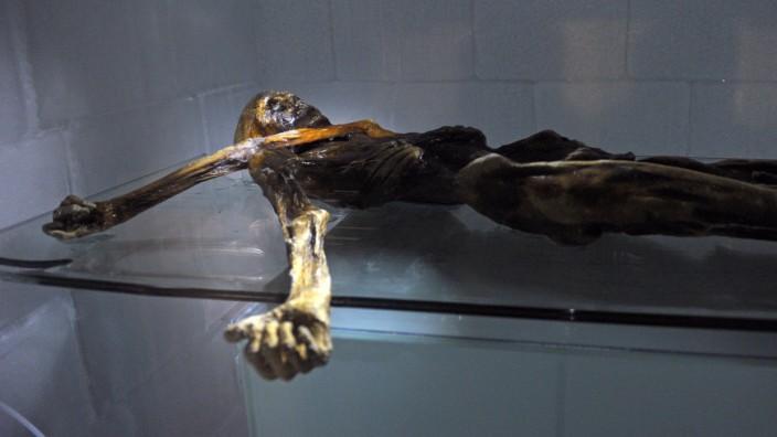 Archäologie: Aus den Bergen in die Kältekammer im Museum in Bozen: Wie kaum ein Forschungsobjekt steht die Gletschermumie Ötzi mittlerweile für eine ungewöhnliche Vermischung von Wissenschaft und Tourismus.