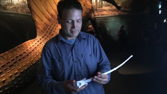 Rosenheimer Lokschuppen: Paläontologe Nizar Ibrahim mit dem Schwanzwirbel aus 3D-Druck vor dem neu rekonstruierten Spinosaurus.