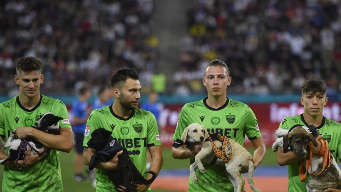 FCSB v Dinamo Bucharest - Romanian First League Catalin Itu, Alexandru Rauta, Deniz Giafer and Costin Amzar hold dogs in