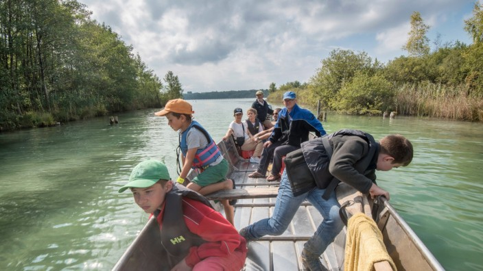 Naturschutz: Auf Bootstour mit dem Fischereiverein zum Schilf an der Mausinsel.