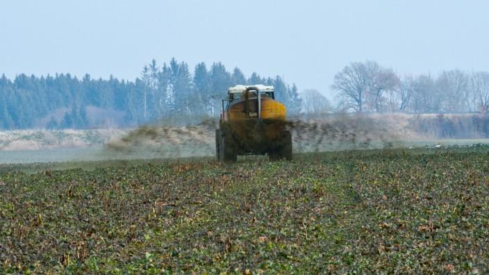 Umwelt in Bayern: Die intensive Landwirtschaft mit ihren Unmengen an Gülle ist der wichtigste Grund dafür, dass vielerorts das Grundwasser mit Nitrat belastet ist.