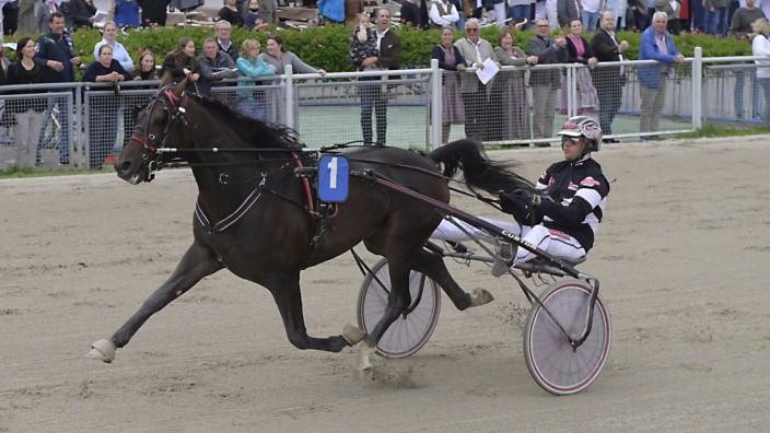 Trabrennen: Im Rennen um den Bayern-Pokal setzen sich Winnetou Diamant und Micha Brouwer durch.